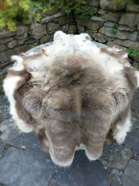Large Reindeer Hide